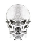Bizarre skull - pencil on paper Stock Images