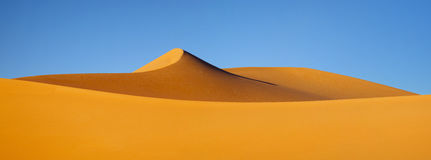 The bizarre yellow dunes on the background of blue sky in the Sahara. Sahara dunes on the background of blue sky Stock Photos