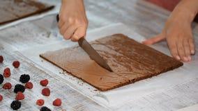 Bizcocho esponjoso del corte de la mano de la mujer Cocinar la torta Primer metrajes