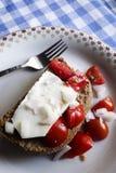 Bizcocho tostado tradicional de la cebada de Dakos del Cretan Fotografía de archivo libre de regalías