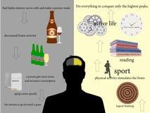 Biznes, sukces, pojęcie, ty, życie, w górę, pomyślny Obrazy Stock