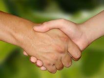 biznes uścisk dłoni Zdjęcia Stock