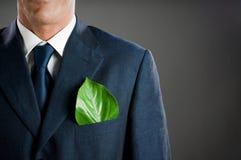 biznes zieleń zdjęcie stock