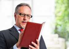 Biznesmen agenda Obrazy Stock