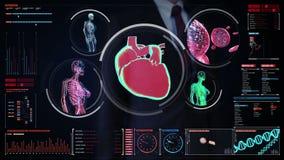 Biznesmen dotyka cyfrowego ekran, Żeńskiego ciała skanerowania naczynie krwionośne, limfatyczny, kierowy, krążeniowy system w cyf royalty ilustracja