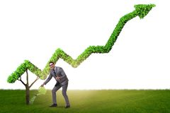 Biznesmen nawadnia pieniężną kreskową mapę w inwestorskim pojęciu Obraz Royalty Free