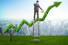 Biznesmen nawadnia pieniężną kreskową mapę w inwestorskim pojęciu Fotografia Stock