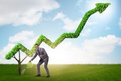Biznesmen nawadnia pieniężną kreskową mapę w inwestorskim pojęciu Obraz Stock