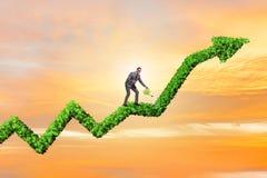 Biznesmen nawadnia pieniężną kreskową mapę w inwestorskim pojęciu Fotografia Royalty Free