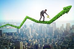 Biznesmen nawadnia pieniężną kreskową mapę w inwestorskim pojęciu Obrazy Stock