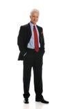 biznesmen pozycja Zdjęcie Royalty Free