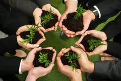 Biznesmen ręki z rośliną i ziemią obraz royalty free