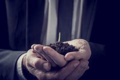 Biznesmen trzyma rośliny dorośnięcie w bogatej ziemi Fotografia Royalty Free