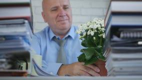 Biznesmen Układa kwiatu na biurku W Biurowym pokoju zdjęcie royalty free
