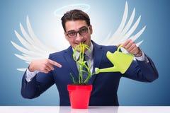 Biznesmen w anioła inwestora pojęcia narastającej przyszłości zyskuje Obraz Stock