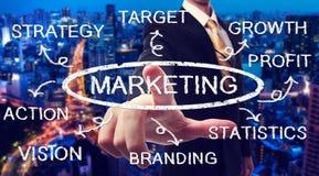 Biznesmen wskazuje marketingową mapę Zdjęcia Stock
