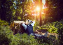 Biznesmen z ślepuszonki głowy obsiadaniem w lesie obraz royalty free