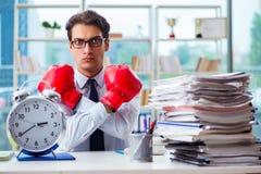 Biznesmen z bokserskimi rękawiczkami w biurze Obrazy Royalty Free