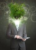 Biznesmena chwyta pastylki komputer osobisty Zielony drzewo zamiast jego Zdjęcie Stock