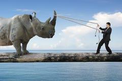 Biznesmena ciągnięcia arkana przeciw nosorożec równoważeniu na drzewie tr zdjęcie royalty free