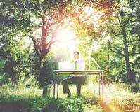 Biznesmena Forest Green Pracujący Komputerowy pojęcie obrazy royalty free