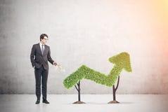 Biznesmena i trawy wykres Zdjęcia Stock
