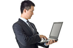 biznesmena laptop Obraz Stock