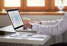 biznesmena laptopu biurowy pieniężny planowanie Zdjęcie Stock