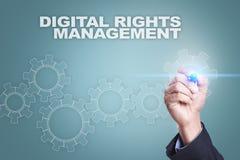 Biznesmena rysunek na wirtualnym ekranie cyfrowy dobra zarządzania pojęcie Obrazy Stock