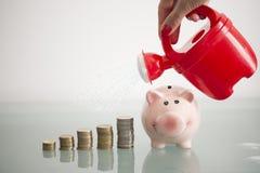 Biznesowa kobieta nawadnia jej oszczędzania stosy pieniądze i prosiątko bank z podlewanie puszką, obraz royalty free