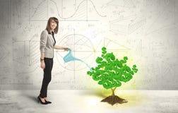 Biznesowa kobieta nawadnia narastającego zielonego dolarowego znaka drzewa Obrazy Stock
