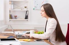 Biznesowa kobieta pracuje na laptopie przy biurem Zdjęcie Royalty Free