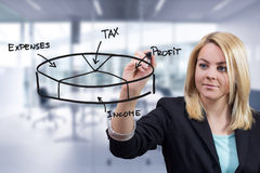 Biznesowa kobieta rysuje 3D pasztetową mapę przy biurem Fotografia Royalty Free