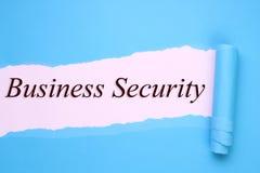Biznesowa ochrona obrazy stock