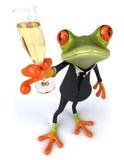 biznesowa szampańska żaba Fotografia Royalty Free