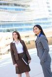 biznesowego biura drużyny kobieta obrazy stock
