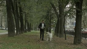 Biznesowego mężczyzna bieg z figlarnie dużym bielu psem w zielonym miasto parku obraz stock