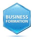 Biznesowej formacji sześciokąta krystaliczny błękitny guzik ilustracji