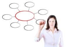 Biznesowej kobiety writing diagram. Zdjęcie Royalty Free