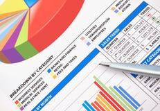 biznesowej mapy pieniężny wykres Fotografia Stock