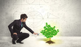 Biznesowy mężczyzna nawadnia narastającego zielonego dolarowego znaka drzewa Obrazy Royalty Free