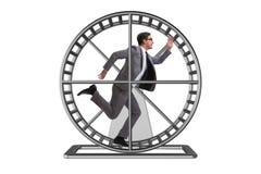 Biznesowy pojęcie z biznesmena bieg na chomikowym kole obrazy royalty free