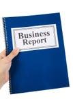 biznesowy raport Fotografia Royalty Free