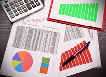 Biznesowy sprawozdanie roczne zdjęcia stock