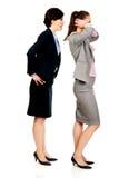 Bizneswoman krzyczy na jej partnerze Zdjęcie Stock