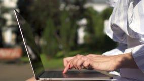 Bizneswoman pracuje na laptopu obsiadaniu na ławce w parku zbiory