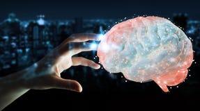 Bizneswoman używa cyfrową 3D projekcję ludzki mózg 3D ponowny ilustracji