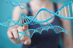 Bizneswoman używa nowożytnego DNA struktury 3D rendering Zdjęcia Royalty Free