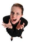 bizneswomanu expressin frustation potomstwa obraz stock