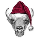 Bizon, żubr, wół, byka Bożenarodzeniowy ilustracyjny dzikie zwierzę jest ubranym bożego narodzenia Santa Claus zimy kapeluszu kap Zdjęcia Stock